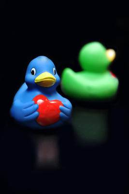 Pfingstmontag geht das 8.  Kieler Entenrennen an den Start