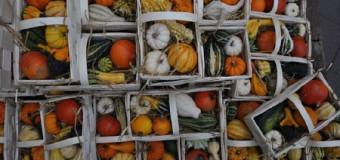 14. Kieler Bauern- und Regionalmarkt