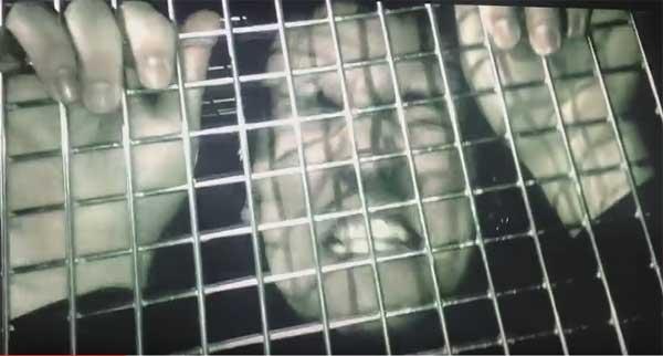 Schaubude Kiel – Hülsy´s Abschiedshow – Morbus Down + Rezet + Death Hoax